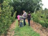 Helping Derek find berries